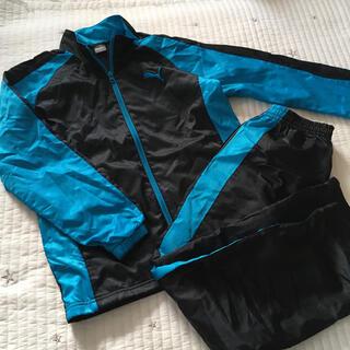 プーマ(PUMA)の美品 160 puma プーマ ウィンドブレーカー 裏起毛 ジャージ 上下(ジャケット/上着)