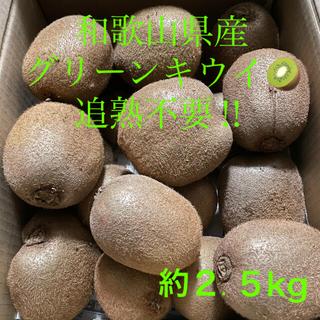 【農家直送】キウイフルーツ(グリーン)約2.5kg(フルーツ)