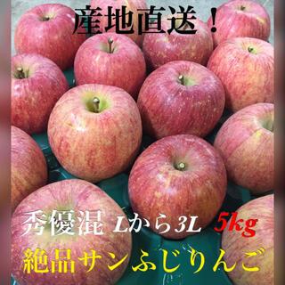産地直送!絶品サンふじりんご★Lから3L★5kg(フルーツ)