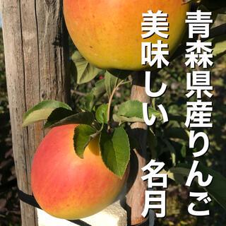 残りわずか!青森県産りんご 名月 ぐんま名月(フルーツ)