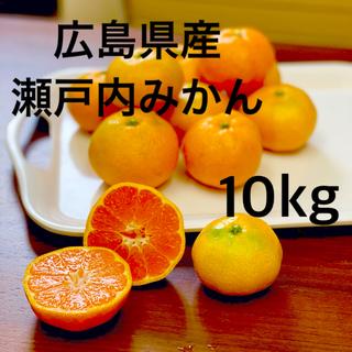 広島県産 みかん 豊島 10kg(フルーツ)