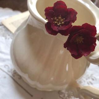 アネモネフラワー / ワインレッド / ハンドメイド 花材(ドライフラワー)