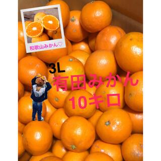 和歌山有田みかん3L4L10キロ 赤秀青秀品(フルーツ)