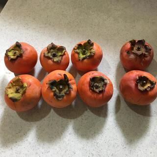 柿 約1kg(8個) 11月28日(土)の撮影画像(フルーツ)