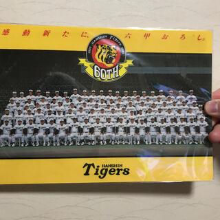 ハンシンタイガース(阪神タイガース)の1995年 阪神タイガース下敷き(スポーツ選手)