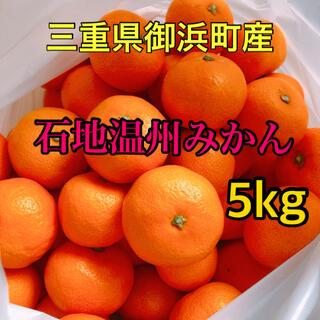 三重県 温州みかん【5Kg】(フルーツ)