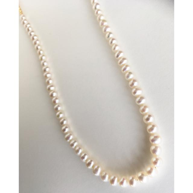 TOMORROWLAND(トゥモローランド)の淡水パールネックレス イエローゴールドカラー パールネックレス 淡水真珠 白 レディースのアクセサリー(ネックレス)の商品写真