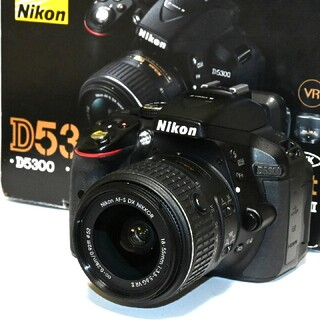 Nikon - 【Nikon】Wi-Fi機能搭載!自撮りもラクラク!D5300レンズキット