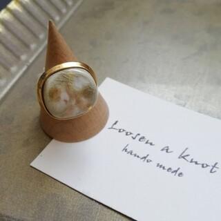 アメリヴィンテージ(Ameri VINTAGE)の淡色陶器ボタンリング(リング)