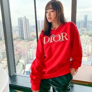 ディオール(Dior)のDIOR  20FW  パーカー★カップルモデル(パーカー)