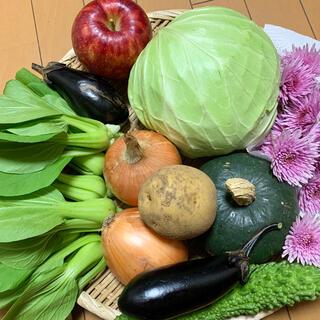 無農薬栽培野菜、ご希望の野菜を対応します(野菜)