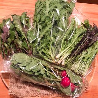 無農薬*お野菜セット(野菜)