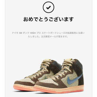 NIKE - 【26.5】NIKE SB DUNK HIGH concepts コンセプツ