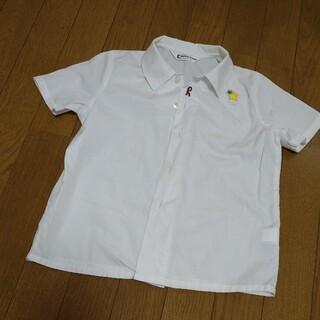 ROBERTA DI CAMERINO - ロベルタ 幼稚園制服シャツ