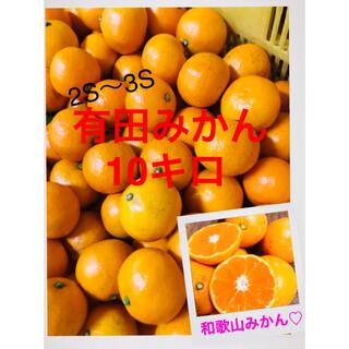 和歌山有田みかん3S2S小粒10キロ 希少!