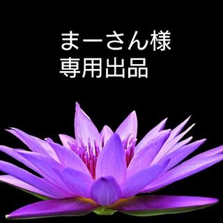 インデックス(INDEX)の[美品] index インデックス マフラー ストール 黒(マフラー/ショール)