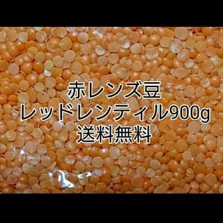レッドレンティル900g/Red Lentil・赤レンズ豆・乾燥豆(米/穀物)