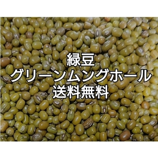 緑豆・グリーンムングホール900g・乾燥豆(米/穀物)