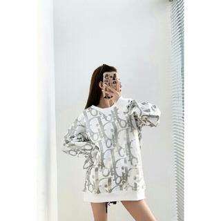 ディオール(Dior)のDIOR  20SS  パーカー★カップルモデル(パーカー)