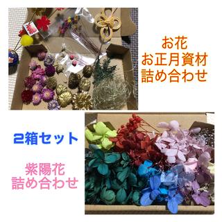 紫陽花 花材 ドライフラワー ハーバリウム アジサイ レインボー かすみ草(ドライフラワー)