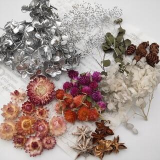 花材 詰め合わせ ハーバリウム ドライフラワー 紫陽花 シルバー かすみそう(ドライフラワー)