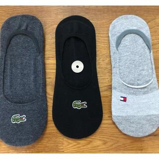 トミーヒルフィガー(TOMMY HILFIGER)の新品ラコステ トミーヒルフィガー レディース靴下 ソックス  3足セット855(ソックス)