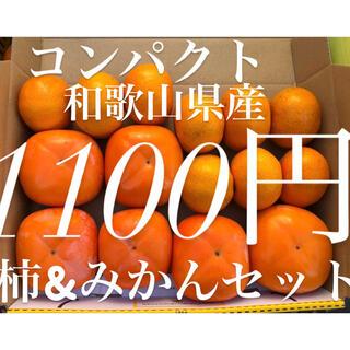 和歌山県産 有田みかん&富有柿