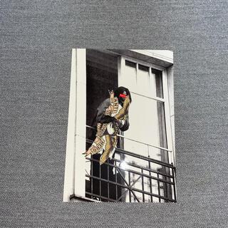 シュプリーム(Supreme)のシュプリーム Anti Hero Balcony Tee ステッカー(その他)