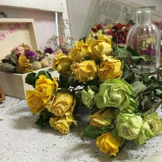 ❀✿୨୧⑅*.一輪薔薇7本❀✿୨୧⑅*.(ドライフラワー)