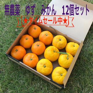 〈最終価格、今週で終了)無農薬 埼玉県産 柚子ゆず蜜柑みかん12個セット(フルーツ)