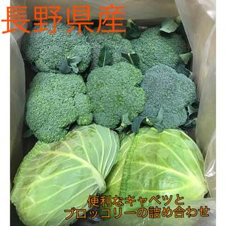 長野県産 キャベツとブロッコリーの詰め合わせ