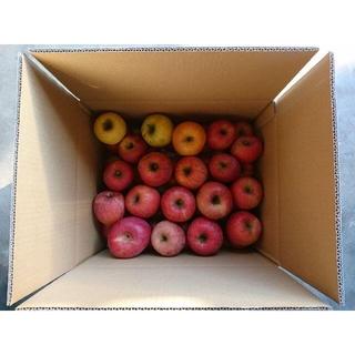 りんご ふじ 10kg 長野県産 規格外品 おまけあり
