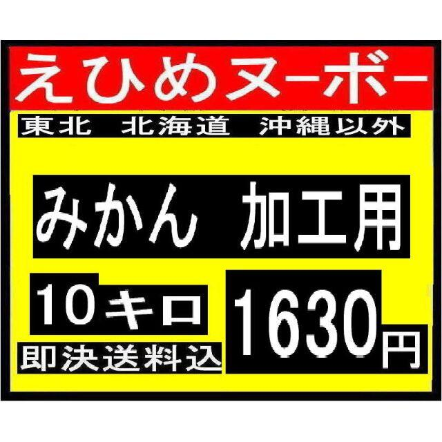 6えひめヌーボー みかん 加工用 10キロ 食品/飲料/酒の食品(フルーツ)の商品写真