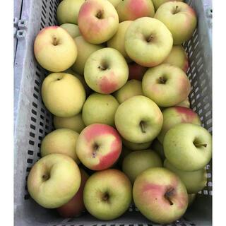 青森県産りんご ぐんま名月 ※小さいサイズ 4キロ