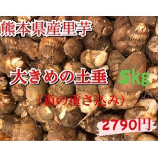 ふっくら里芋5kg blueblue様専用(野菜)