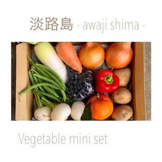 淡路島【 コンパクト 】ミニ野菜set