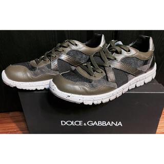 DOLCE&GABBANA - 美品ドルチェ&ガッバーナD&Gスニーカー6.5シューズ靴ハイテク25秋冬カーキ