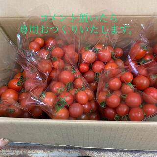 トマトフルティカコメント欄つくりました。(野菜)