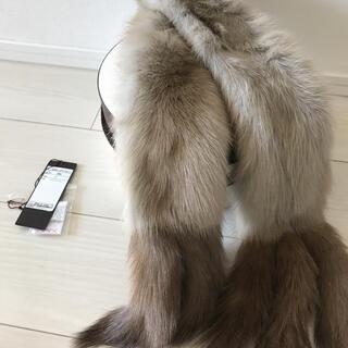 FOXEY - フォクシー ロシアンセーブル