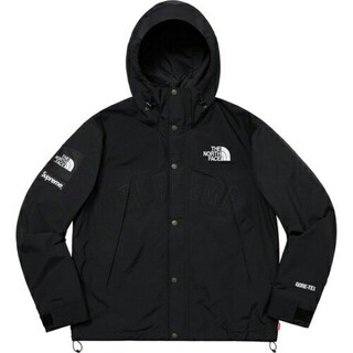 シュプリーム(Supreme)のSupreme 19ss TNF Arc Logo Mountain Parka(マウンテンパーカー)