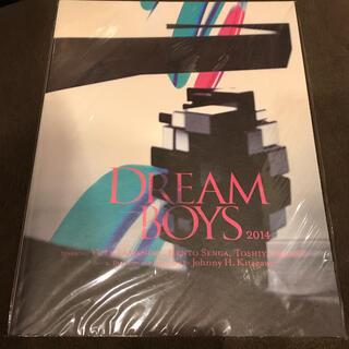 キスマイフットツー(Kis-My-Ft2)のDREAM BOYS 2014 パンフレット(アート/エンタメ)