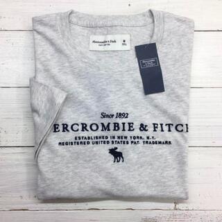 Abercrombie&Fitch - 新品【メンズXS】★アバクロ★スマート!総刺しゅうロゴ半袖Tシャツ/グレー