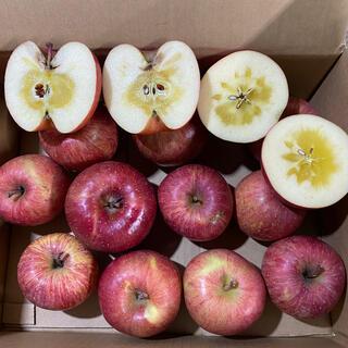 青森県産リンゴ葉とらずサンふじ家庭用3キロ