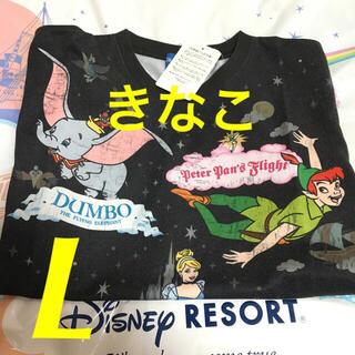 Disney - ディズニー ファンタジーランド アトラクション Tシャツ L