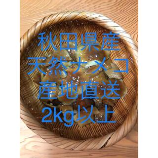令和2年 秋田県産 天然ナメコ塩漬け            2kg以上(野菜)