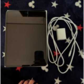 iPad - iPad 11pro第2世代256ギガwifi+充電器付き