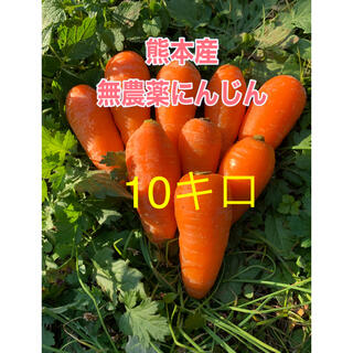 熊本産無農薬にんじん10キロ