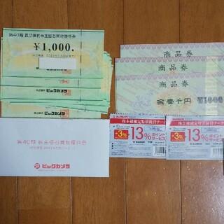 ビックカメラ 株主優待券&商品券 19000円分(ショッピング)