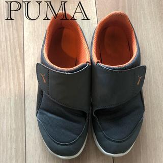 PUMA - PUMA スニーカー 20cm