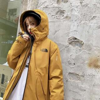 THE NORTH FACE - 2020 FW /The North Face三合一限定ダウンジャケット